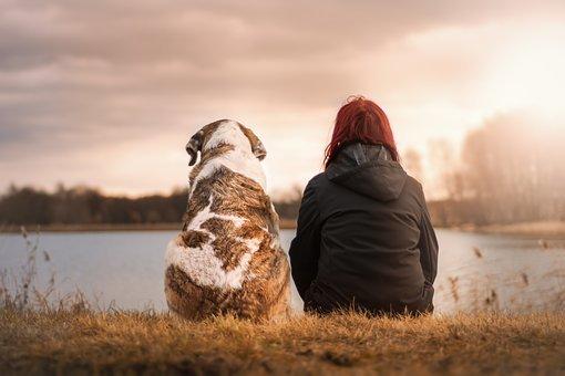hond en vriend